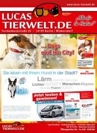 Lucas Tierwelt Alles für Ihr Heimtier September 2014 KW39