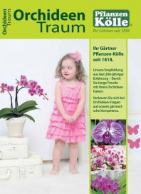 Pflanzen Kölle Orchideen Traum Oktober 2014 KW40