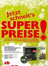 Pflanzen Kölle Jetzt schneits Superpreise Dezember 2014 KW49