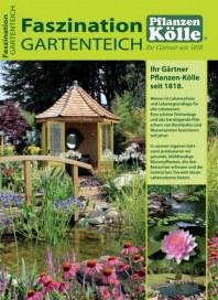 Pflanzen Kölle Faszination Gartenteich Februar 2015 KW05