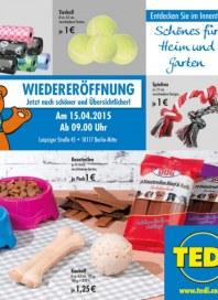 Tedi GmbH & Co. KG Schönes für Heim und Garten April 2015 KW16 1
