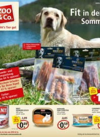 Zoo & Co. Fit in den Sommer Juli 2015 KW27