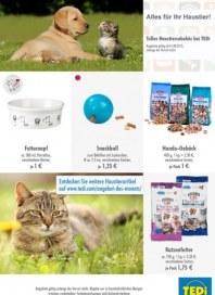 Tedi GmbH & Co. KG Alles für Ihr Haustier August 2015 KW31