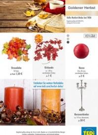 Tedi GmbH & Co. KG Goldener Herbst August 2015 KW32
