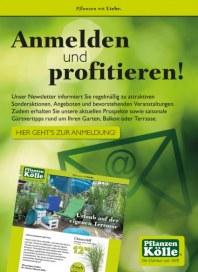 Pflanzen Kölle Anmelden und profitieren August 2015 KW33