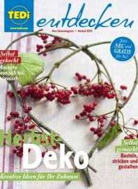 Tedi GmbH & Co. KG Herbstdeko- Kreative Ideen für Ihr Zuhause September 2015 KW39