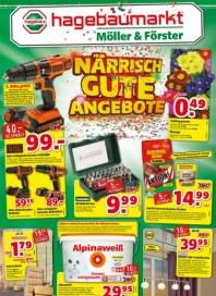 hagebaumarkt Närrisch gute Angebote Januar 2016 KW04 1