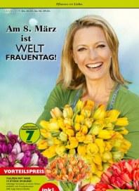 Pflanzen Kölle Pflanzen mit Liebe März 2016 KW09