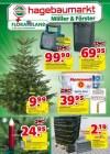 hagebaumarkt Hagebau (Weekly2) Dezember 2018 KW49-Seite1