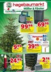 hagebaumarkt Hagebau (Weekly2) Dezember 2018 KW49