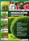 hagebaumarkt Hagebau (Weekly2) Februar 2019 KW09-Seite3