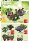 Marktkauf Marktkauf (Weekly) März 2019 KW11 16-Seite6