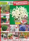 hagebaumarkt Hagebau (Weekly1) März 2019 KW11 8-Seite3