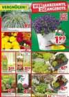 hagebaumarkt Hagebau (Weekly1) März 2019 KW11 8-Seite5