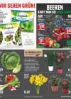 Marktkauf Marktkauf (Weekly) März 2019 KW13 27-Seite5