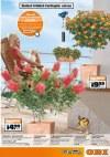OBI Frühlingsideen - Einfach loslegen!-Seite7